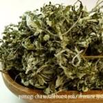 ウィルス対策~ヨモギ茶のビタミンCで免疫をつける