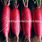 無農薬の紅大根 [浄化作用の強い春の赤い食材]